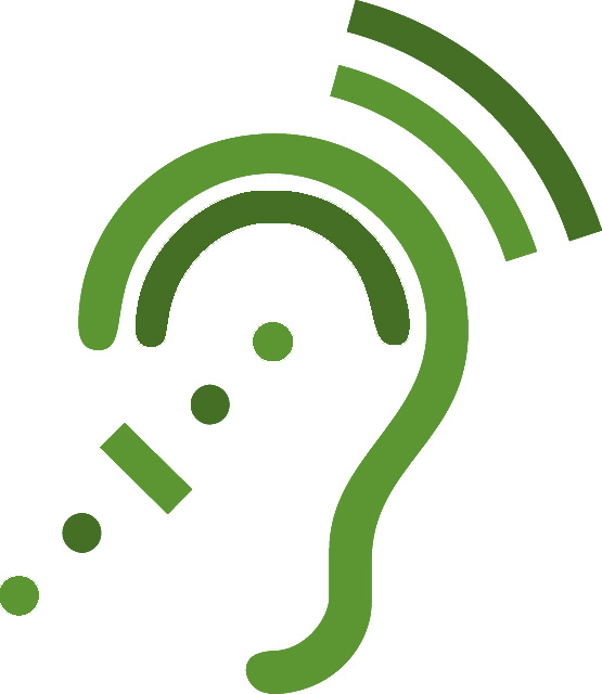 Realizzazione dispositivi per le sordità